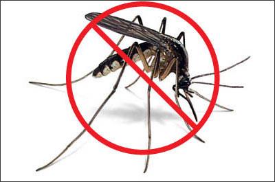 Mẹo đuổi muỗi