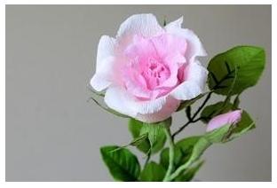 Cách làm hoa hồng giấy đơn giản