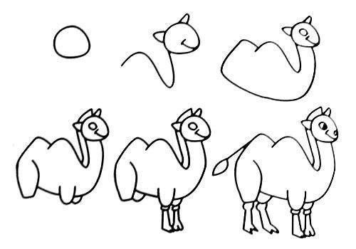 `Cách vẽ con lạc đà đơn giản